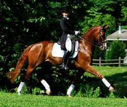 Nancy Wesolek-Sterret: the head of the dressage department at Meredith Manor.