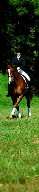 A professional rider is one of the many equine careers Meredith Manor graduates pursue.