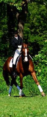 Meredith Manor instructor Nancy Wesolek Sterrett. An equine career college providing students an equine education.