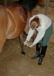 Instructor, Kristen Clark, taking care of her horse's hoof after her trail ride